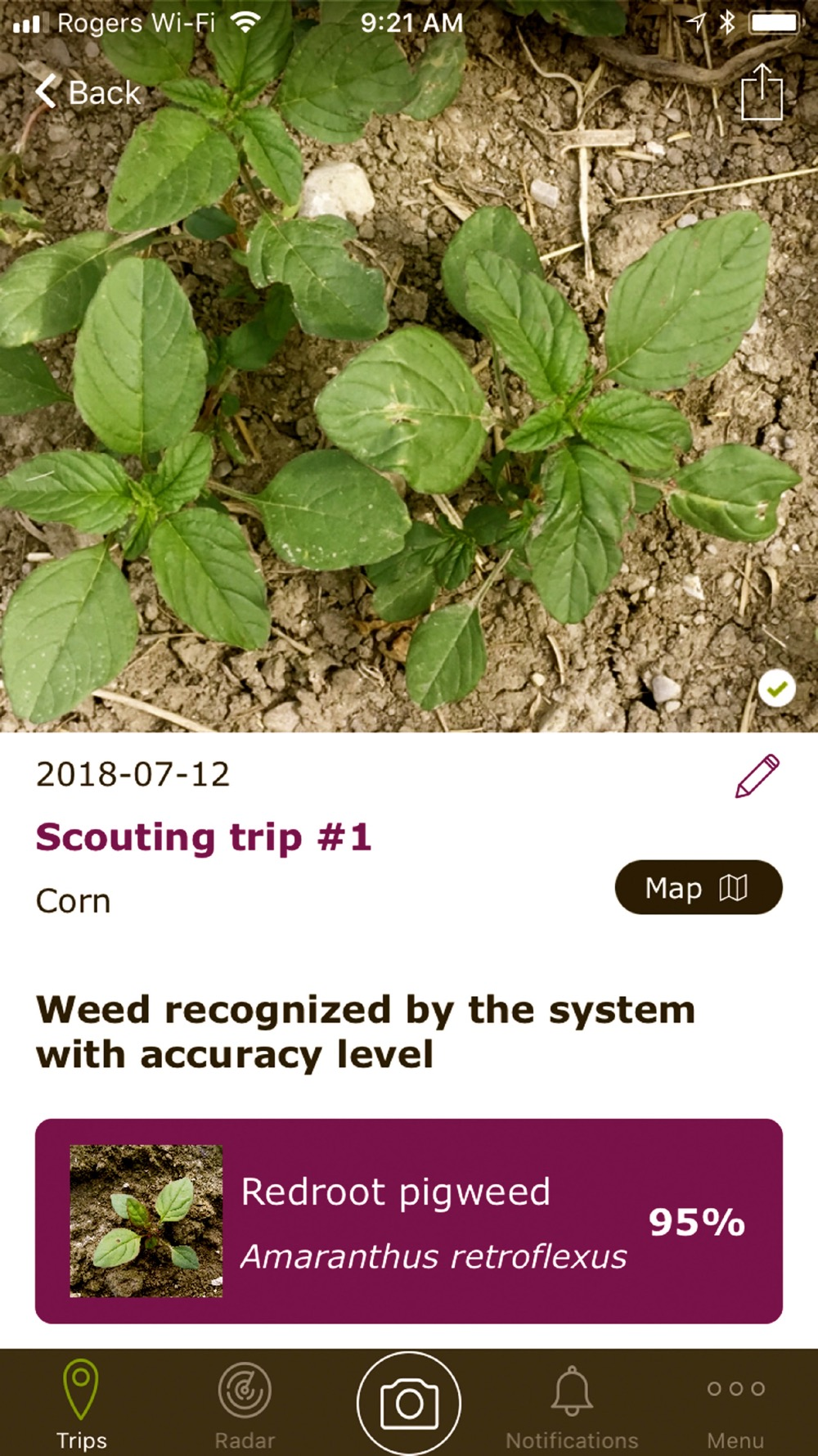Crop Scouting With Your Smartphone