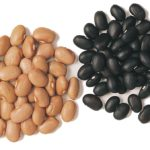 Ontario edible bean production well above StatsCan estimates: grower group
