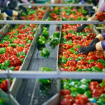 Corporate giants continue pushing food sector tech-adoption