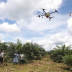 Emmanuel Adou, an Ivorian farmer, looks a drone spraying his oil palm plantation in Tiassale northern Abidjan, Ivory Coast May 21, 2019. Photo: REUTERS/