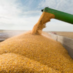 Ontario soybean exports jump in September over 2018 numbers