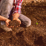 New ONFARM program to build soil health measures and learning