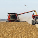 Argentinian politics may prompt soybean glut