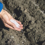 Soil health products part of new entrant's offering
