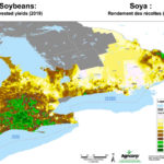 Soybeans in 2019 just below 10-year average