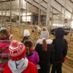 Farm birthday tours fill charity requests