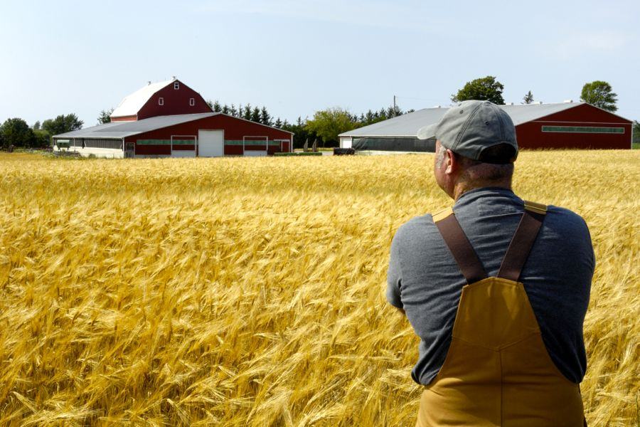 Signed trade deals that were supposed to benefit Canadian farmers have failed to deliver.