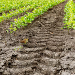 Eastern Canada gets poor grades on soil