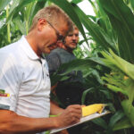 Great Lakes Grain tour calls for big soy and corn yields